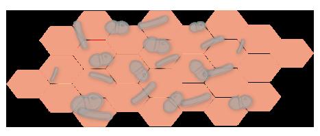 grafik_hautzellen_antimikrobiell_frei
