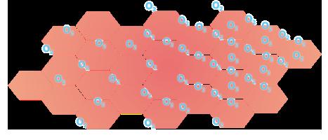 grafik_hautzellen_mikrozirkulation_nach