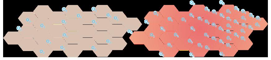 PlasBelle fördert die Mikrozirkulation